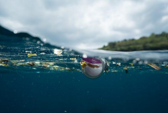 Όχι σκουπίδια στις θάλασσες μας!